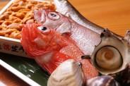 築地市場直送の鮮魚